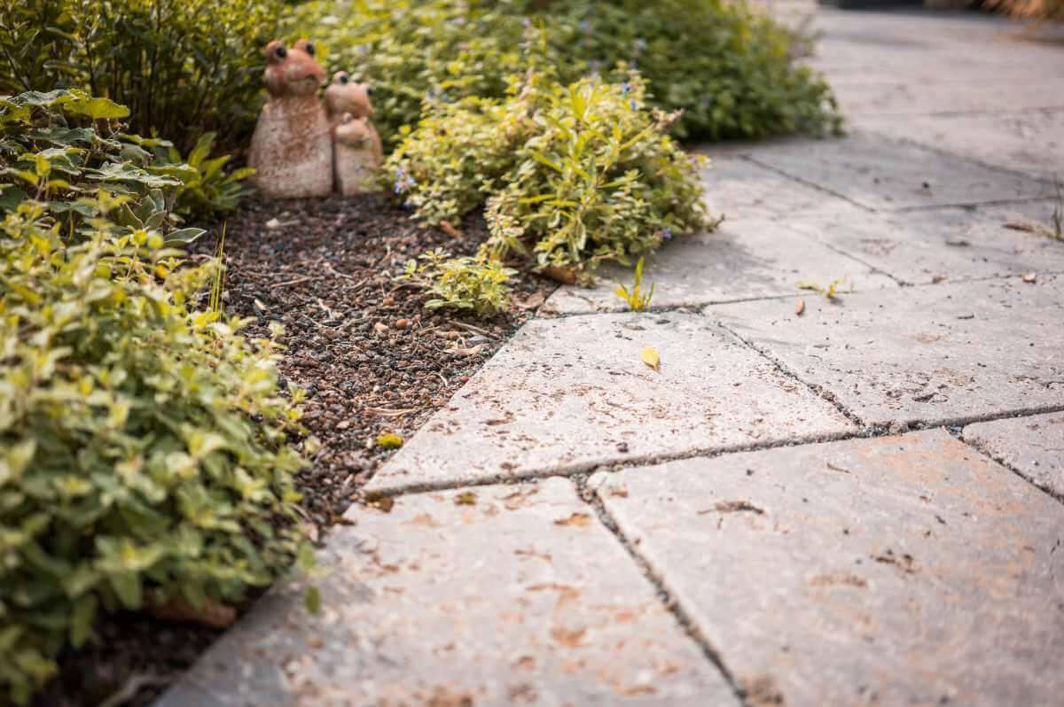 Steinweg mit Pflanzen