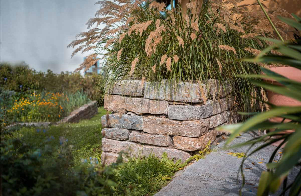 Steinmauer mit Pflanzen